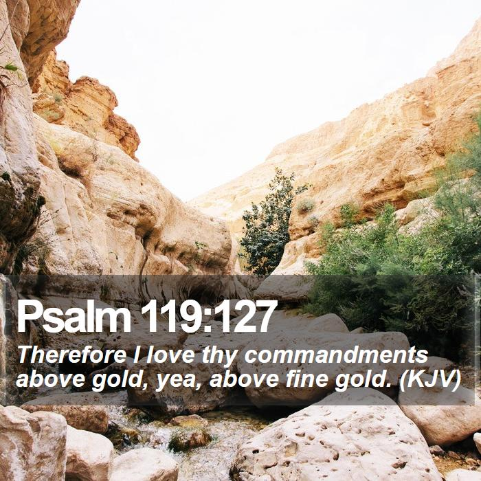 Psalm 119:127 - Therefore I love thy commandments above gold, yea, above fine gold. (KJV)