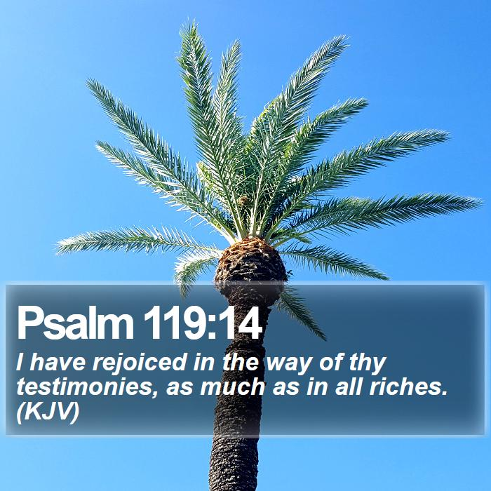 Psalm 119:14 - I have rejoiced in the way of thy testimonies, as much as in all riches. (KJV)