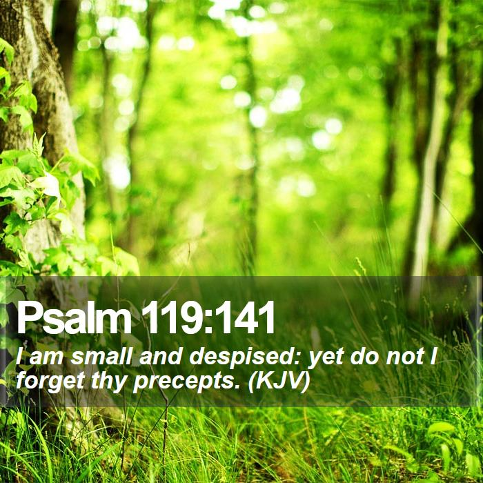 Psalm 119:141 - I am small and despised: yet do not I forget thy precepts. (KJV)