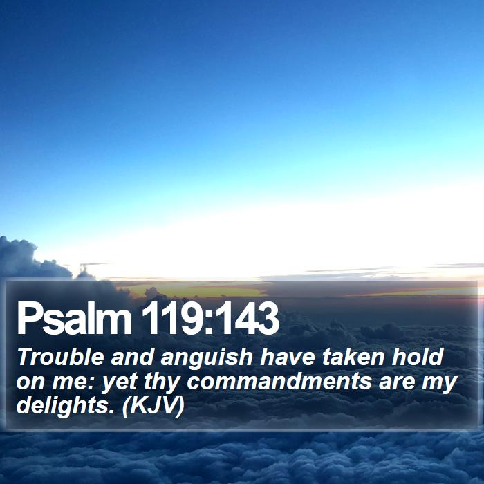 Psalm 119:143 - Trouble and anguish have taken hold on me: yet thy commandments are my delights. (KJV)