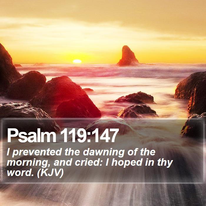 Psalm 119:147 - I prevented the dawning of the morning, and cried: I hoped in thy word. (KJV)