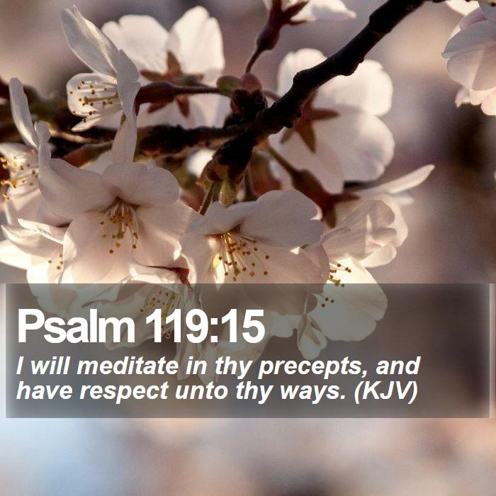 Psalm 119:15 - I will meditate in thy precepts, and have respect unto thy ways. (KJV)