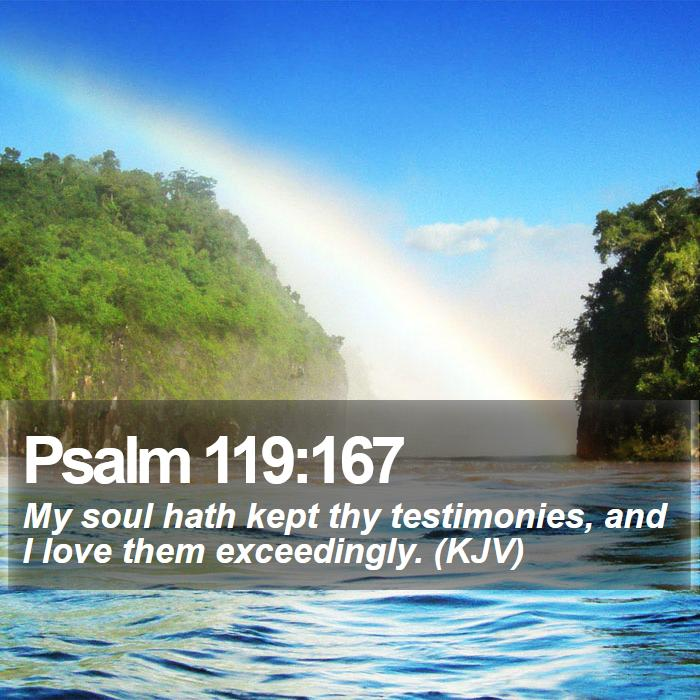 Psalm 119:167 - My soul hath kept thy testimonies, and I love them exceedingly. (KJV)