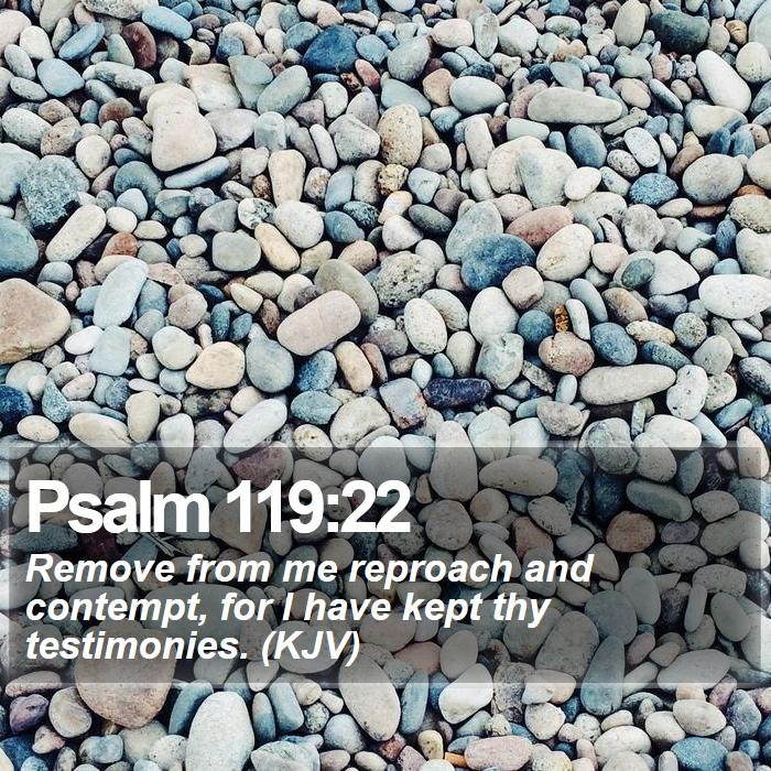 Psalm 119:22 - Remove from me reproach and contempt, for I have kept thy testimonies. (KJV)