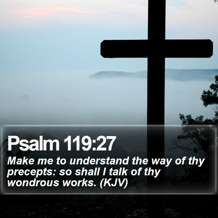 Psalm 119:27 - Make me to understand the way of thy precepts: so shall I talk of thy wondrous works. (KJV)