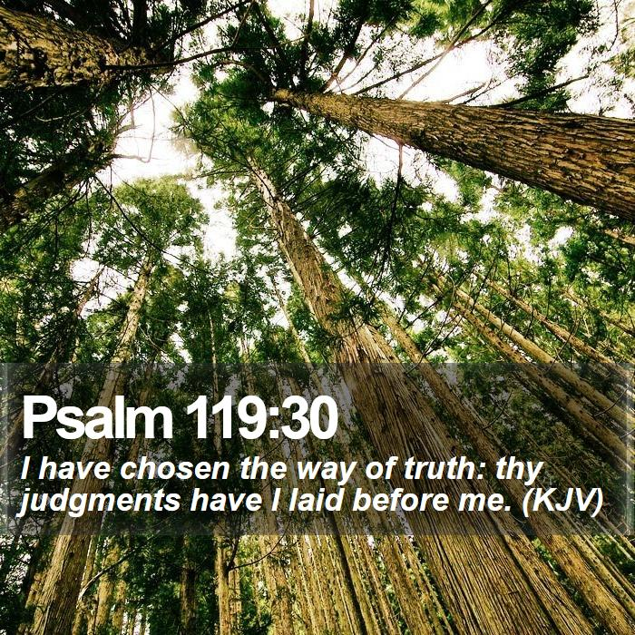Psalm 119:30 - I have chosen the way of truth: thy judgments have I laid before me. (KJV)