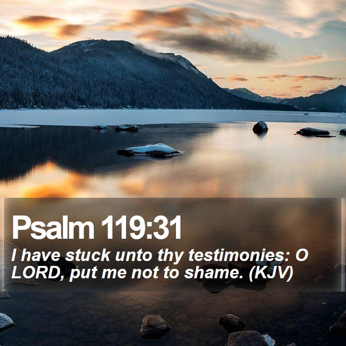 Psalm 119:31 - I have stuck unto thy testimonies: O LORD, put me not to shame. (KJV)