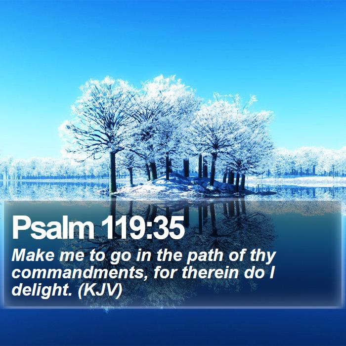 Psalm 119:35 - Make me to go in the path of thy commandments, for therein do I delight. (KJV)
