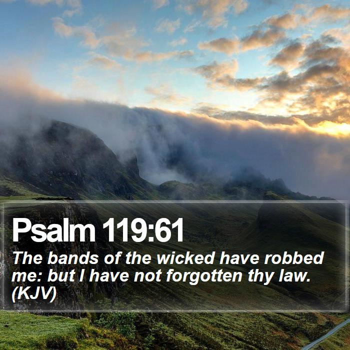 Psalm 119:61 - The bands of the wicked have robbed me: but I have not forgotten thy law. (KJV)