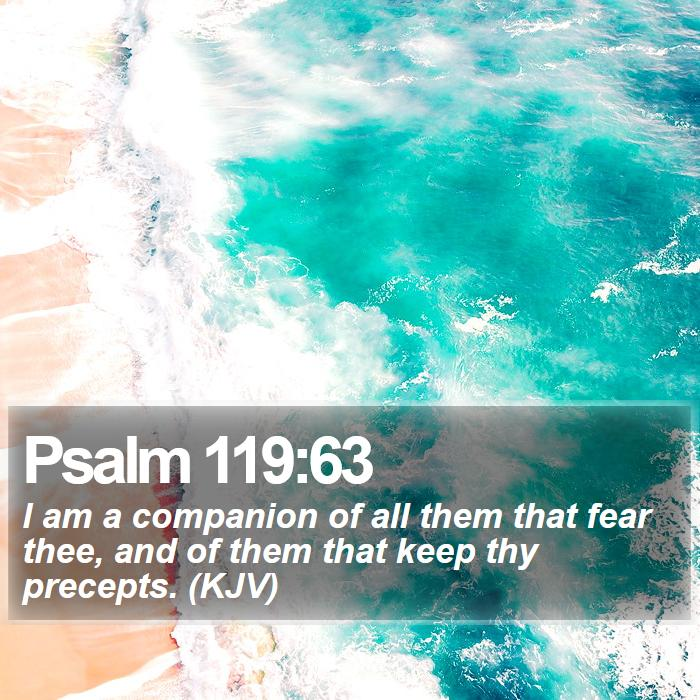Psalm 119:63 - I am a companion of all them that fear thee, and of them that keep thy precepts. (KJV)