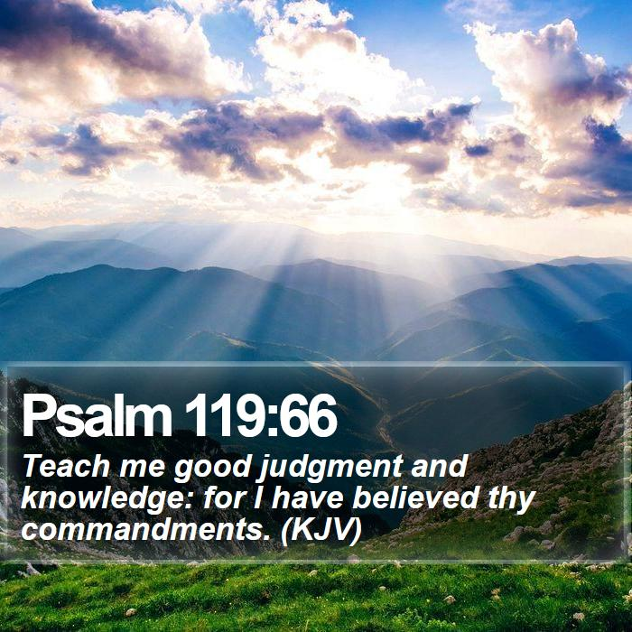 Psalm 119:66 - Teach me good judgment and knowledge: for I have believed thy commandments. (KJV)