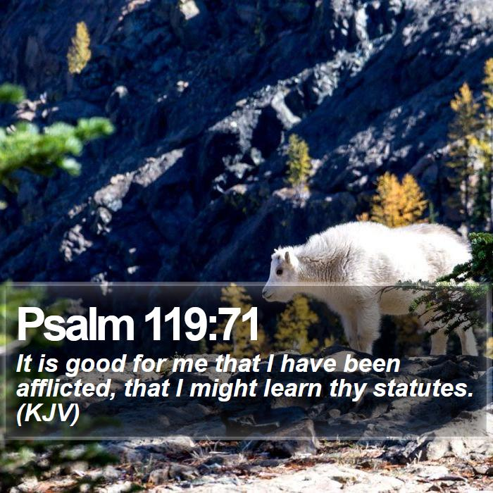 Psalm 119:71 - It is good for me that I have been afflicted, that I might learn thy statutes. (KJV)
