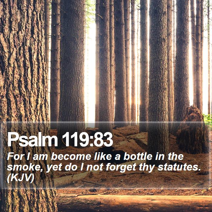 Psalm 119:83 - For I am become like a bottle in the smoke, yet do I not forget thy statutes. (KJV)