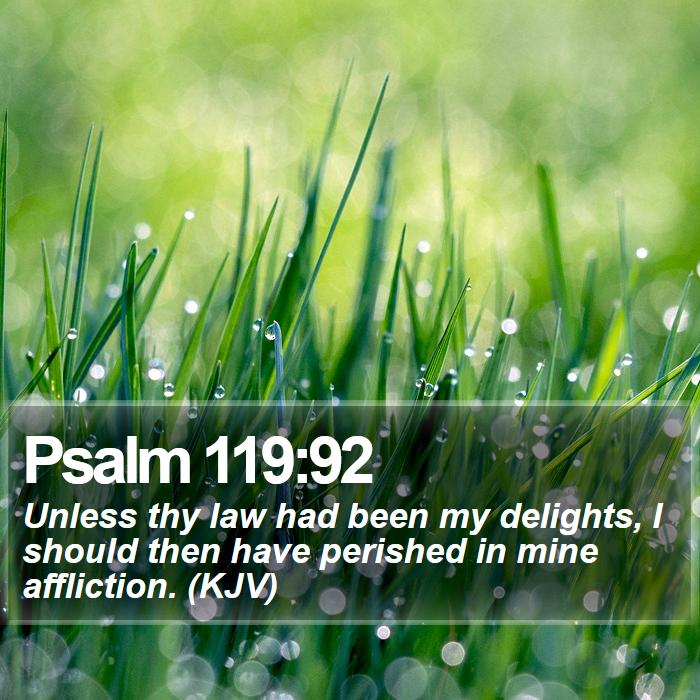 Psalm 119:92 - Unless thy law had been my delights, I should then have perished in mine affliction. (KJV)