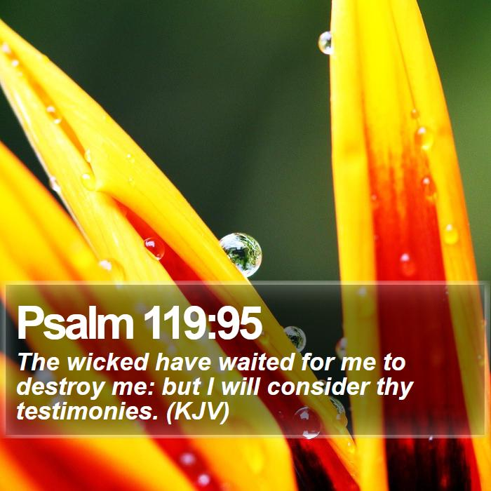 Psalm 119:95 - The wicked have waited for me to destroy me: but I will consider thy testimonies. (KJV)