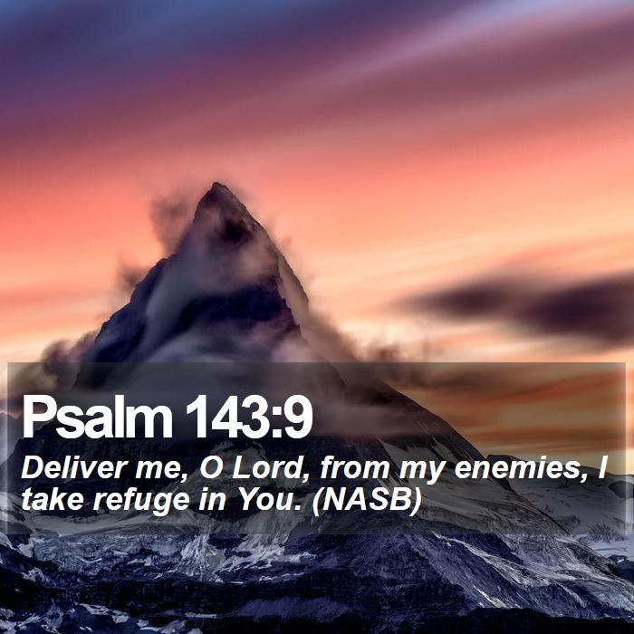 Psalm 143:9 - Deliver me, O Lord, from my enemies, I take refuge in You. (NASB)