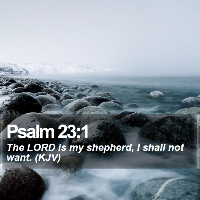 Psalm 23:1 - The LORD is my shepherd, I shall not want. (KJV)