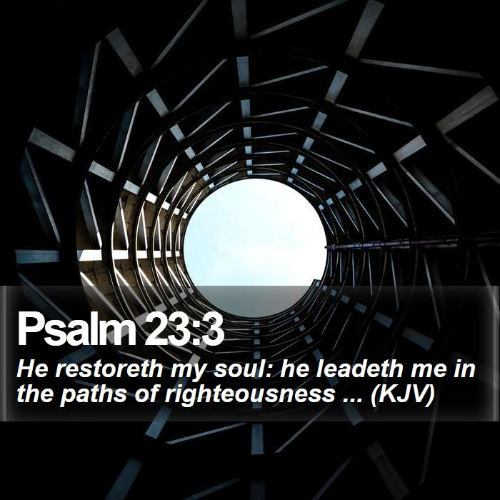 Psalm 23:3 - He restoreth my soul: he leadeth me in the paths of righteousness ... (KJV)