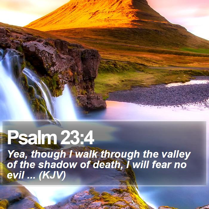 Psalm 23:4 - Yea, though I walk through the valley of the shadow of death, I will fear no evil ... (KJV)