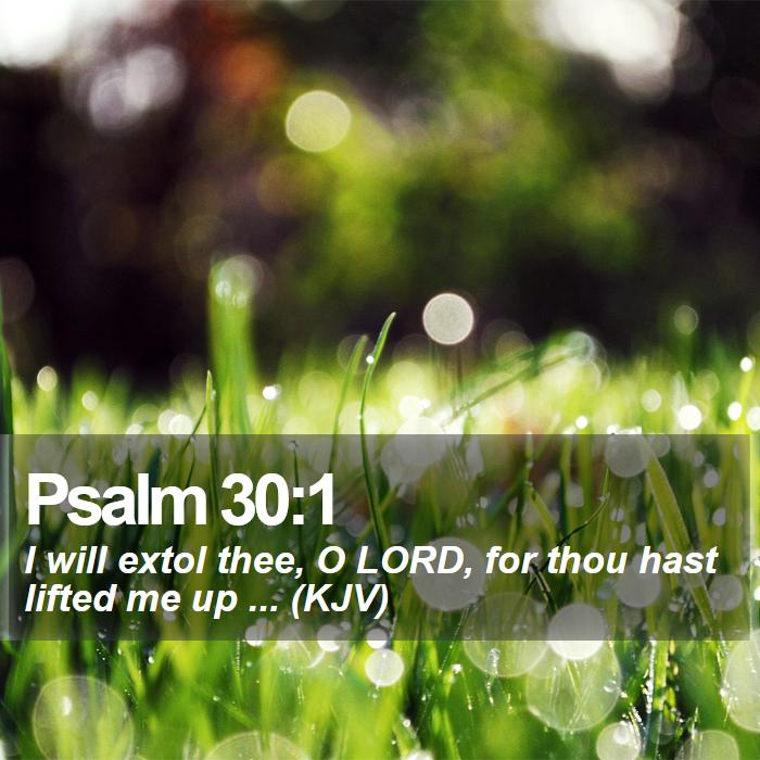 Psalm 30:1 - I will extol thee, O LORD, for thou hast lifted me up ... (KJV)