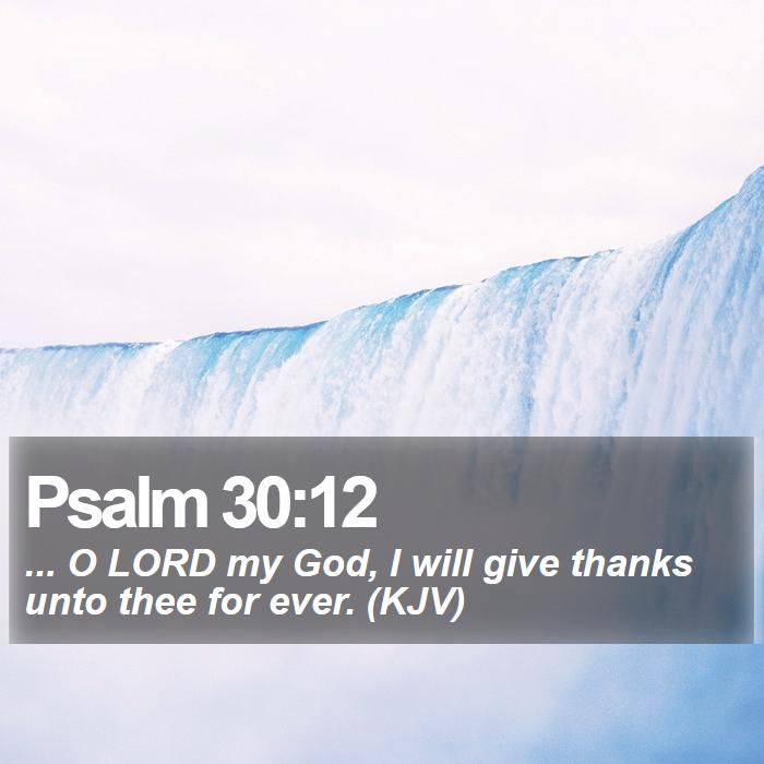 Psalm 30:12 - ... O LORD my God, I will give thanks unto thee for ever. (KJV)