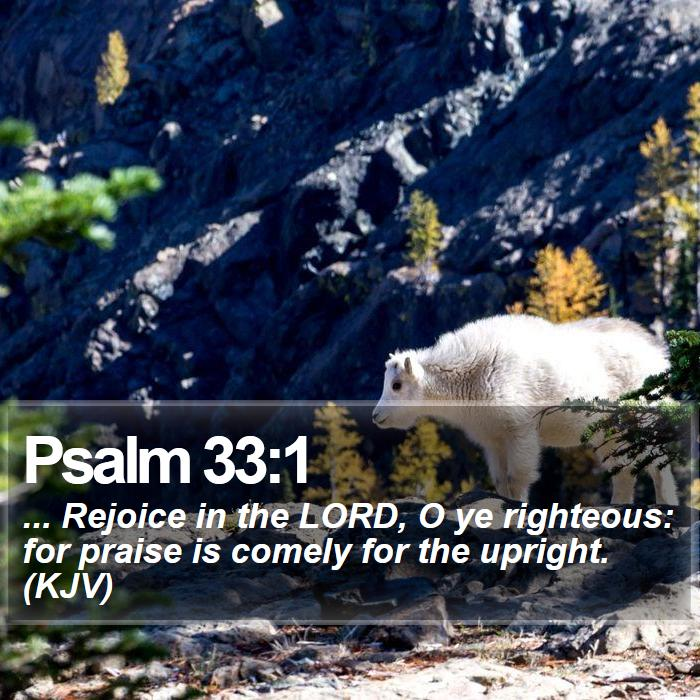 Psalm 33:1 - ... Rejoice in the LORD, O ye righteous: for praise is comely for the upright. (KJV)