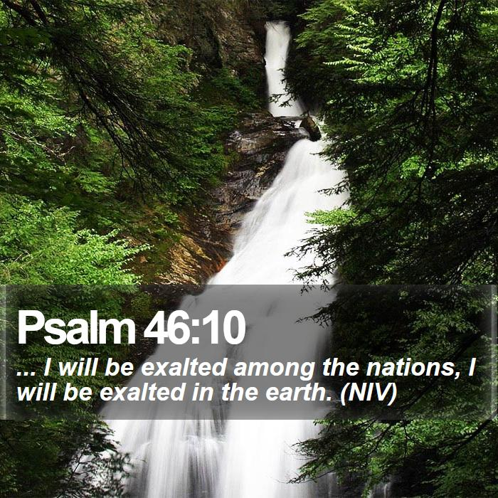Psalm 46:10 - ... I will be exalted among the nations, I will be exalted in the earth. (NIV)