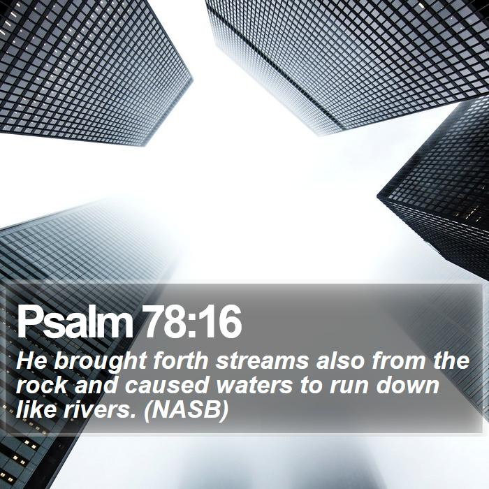 Psalm 78:16 - He brought forth streams also from the rock and caused waters to run down like rivers. (NASB)