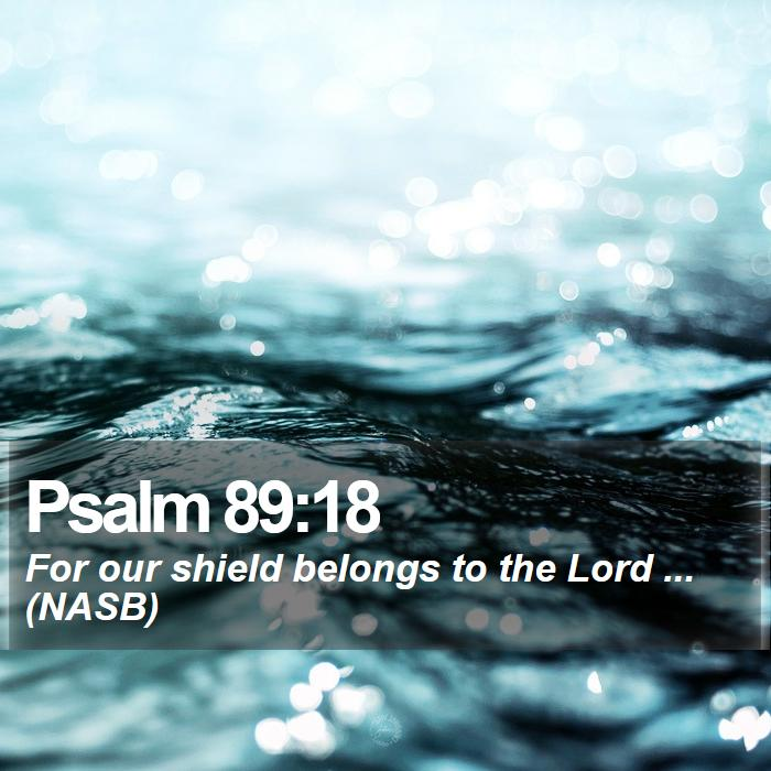 Psalm 89:18 - For our shield belongs to the Lord ... (NASB)