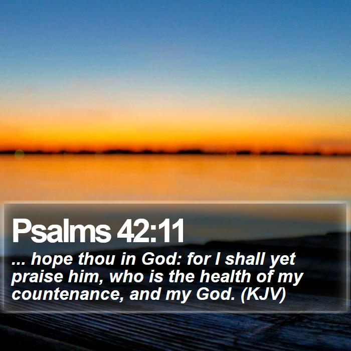 Psalms 42:11 - ... hope thou in God: for I shall yet praise him, who is the health of my countenance, and my God. (KJV)