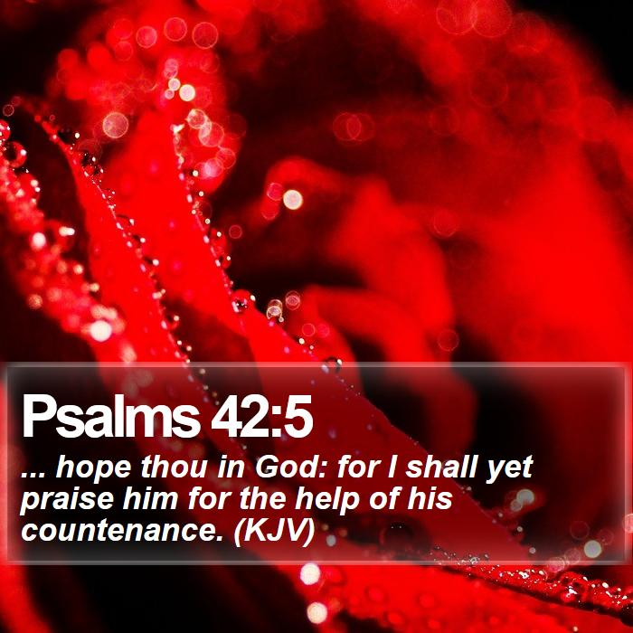 Psalms 42:5 - ... hope thou in God: for I shall yet praise him for the help of his countenance. (KJV)