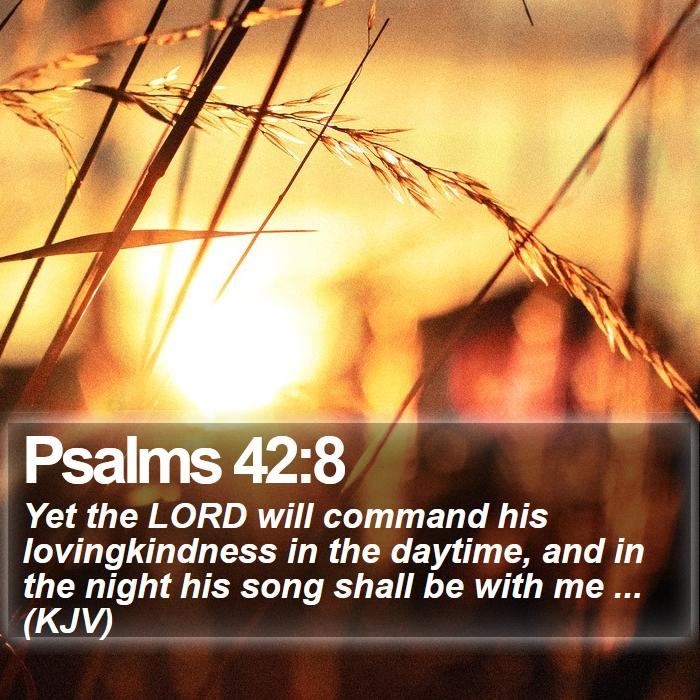 Psalms 42:8 -  Yet the LORD will command his lovingkindness in the daytime, and in the night his song shall be with me ... (KJV)