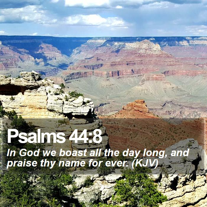 Psalms 44:8 - In God we boast all the day long, and praise thy name for ever. (KJV)