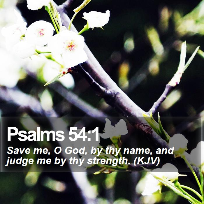 Psalms 54:1 - Save me, O God, by thy name, and judge me by thy strength. (KJV)
