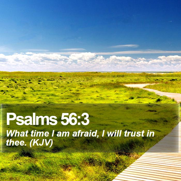 Psalms 56:3 - What time I am afraid, I will trust in thee. (KJV)