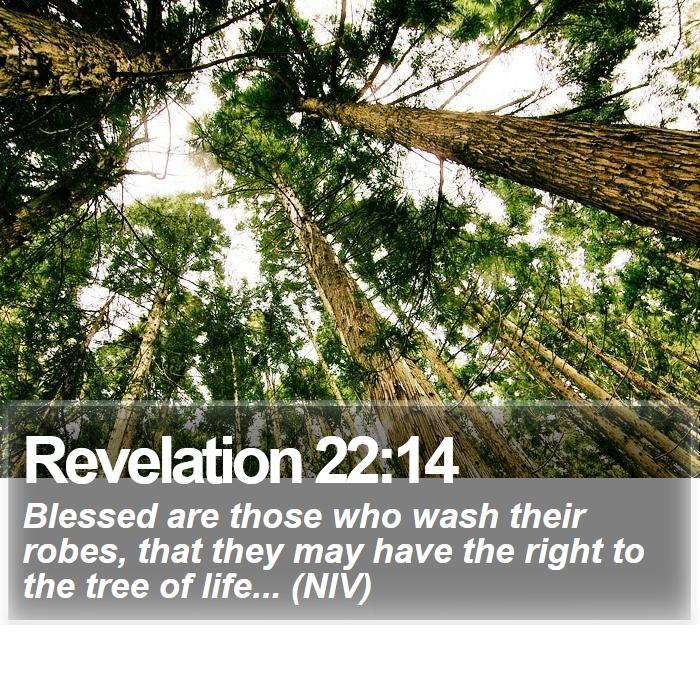 Revelation 22:14 - Blessed are those who wash their robes, that they may have the right to the tree of life... (NIV)