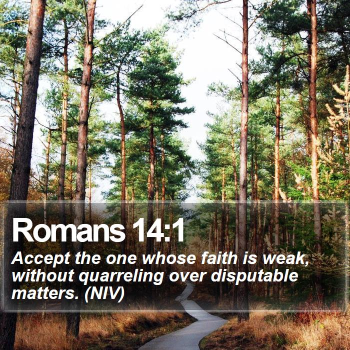 Romans 14:1 - Accept the one whose faith is weak, without quarreling over disputable matters. (NIV)