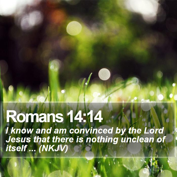 Romans 14:14 - I know and am convinced by the Lord Jesus that there is nothing unclean of itself ... (NKJV)