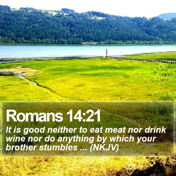 Romans 14:21 - It is good neither to eat meat nor drink wine nor do anything by which your brother stumbles ... (NKJV)