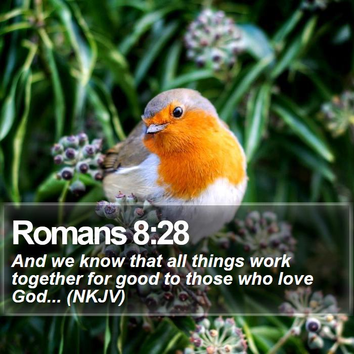 Romans 8:28 - And we know that all things work together for good to those who love God... (NKJV)