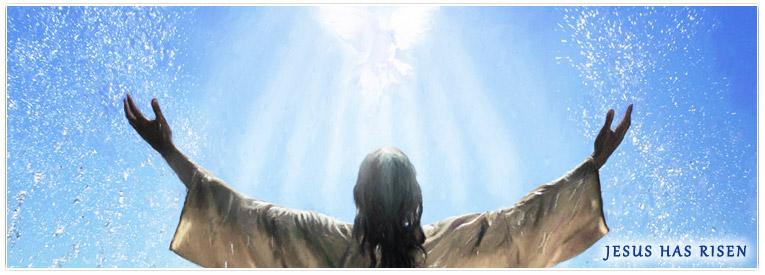 holy bible kjv download pdf